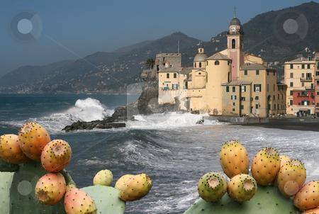 Camogli's church stock photo, Seaside and church in Camogli, famous small town in mediterranan sea, italy by ANTONIO SCARPI