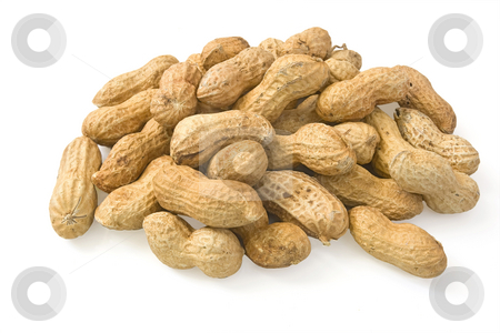 Peanuts stock photo, A group of peanuts isolated on white background by ANTONIO SCARPI
