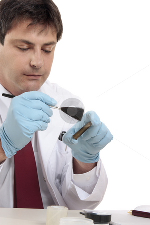 Forensic scientist stock photo, Forensic scientist tests for fingerprints in attempt to solve a crime..  Focus to hands. by Leah-Anne Thompson