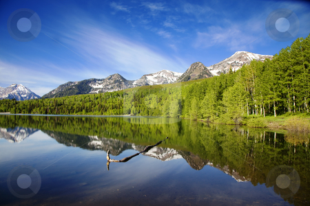 Mountain Lake stock photo, High mountain lake in the Summer showing Reflections by Mark Smith