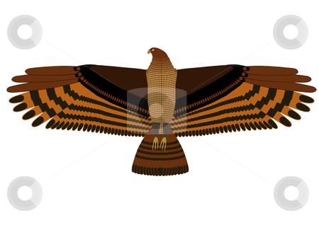 Hovering eagle stock vector clipart, Hovering eagle on white background. Vector illustration. by Onyshchenko Viktor