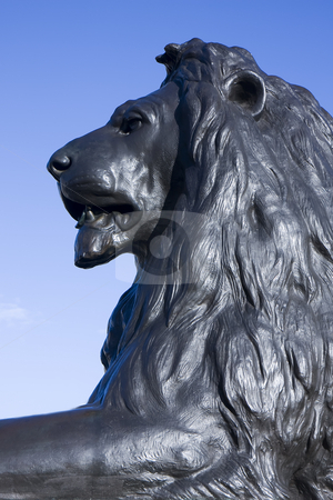 Trafalgar Lion portrait stock photo, Close up of one of the bronze lions at Trafalgar Square, London, England. by Darren Pattterson