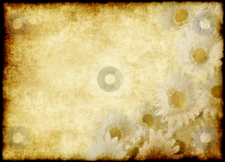 Flower parchment stock photo, Great old parchment paper with nice flowers by Phil Morley