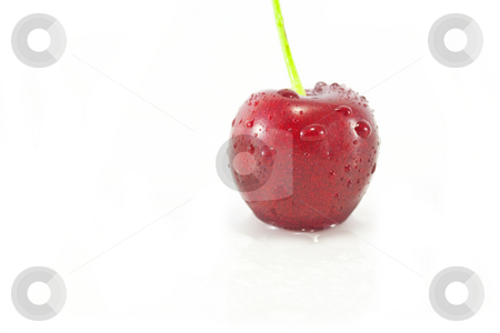 Single Cherry stock photo, A Single Cherry isolated on white by Chris Alleaume