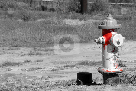 Fire Hydrant stock photo, Unique fire hydrant in black and white with red. by Tammy Abrego