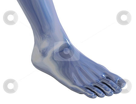 Foot stock photo, Chrome metal foot on white background - 3d illustration by J?