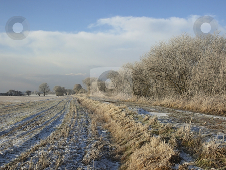 Winter chill stock photo, Fields and trees on a sunny winter morning after a heavy frost by Mike Smith
