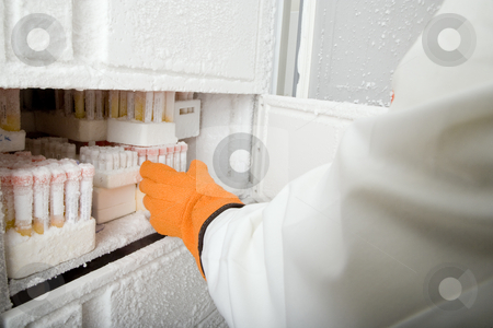 Researcher with Samples stock photo, Cropped image of an adult researcher retrieving medical samples from a freezer. Only the hand and arm are visible. Horizontally framed shot. by Paul Burns