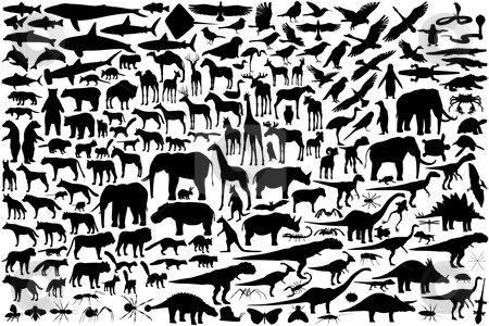 Animal silhouettes stock vector clipart, Diverse set of editable vector animal outlines by Robert Adrian Hillman