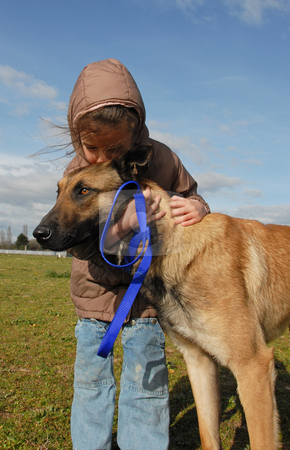 Little girl and her dog stock photo, Little girl kissing her purebred belgian shepherd malinois by Bonzami Emmanuelle