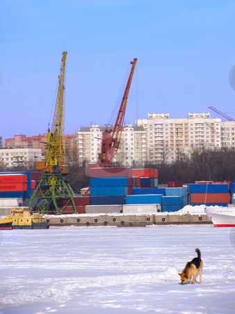 Port on frozen river stock photo, Container harbour on the frozen river with stray dog on foreground by Olga Lipatova