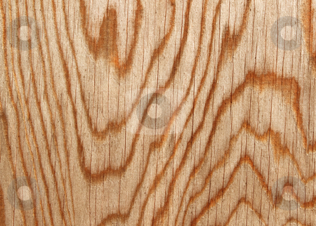 Wood lines natural pattern close up. stock photo, Wood lines natural pattern close up. by Stephen Rees
