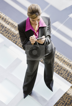 Young Businesswoman stock photo, Young businesswoman standing in office lobby using pda.  Vertically framed shot. by Jonathan Ross