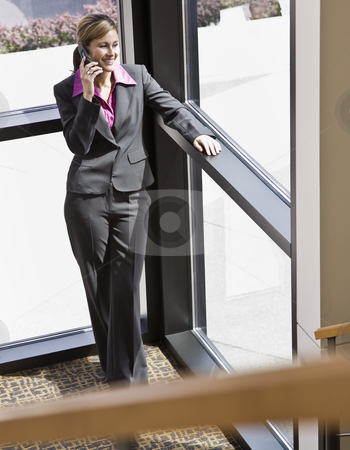 Businesswoman Talking on Cell Phone stock photo, Businesswoman talking on cell phone in front of widow.  Vertically framed shot. by Jonathan Ross