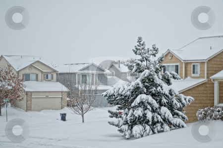 Snowy Day stock photo, A snowy suburban street in Colorado durning a blizzard by Mike Ricci