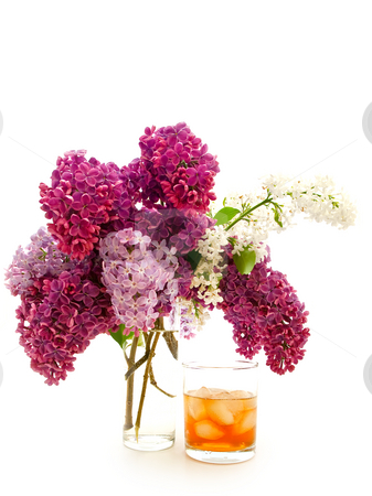 Lilac and whisky stock photo, Glass of alcoholoic drink with ice cubes and lilac by Sergej Razvodovskij