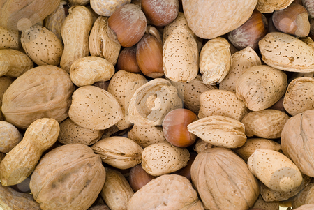 Nuts stock photo, Background of mixed nuts including walnuts, hazelnuts and peanuts by Richard Nelson