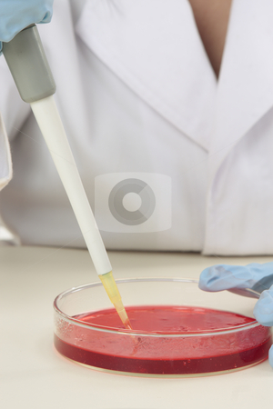 Biological research stock photo, A scientist at work in a laboratory. by Leah-Anne Thompson