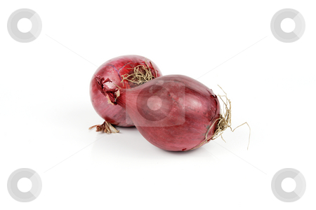 Red Onions stock photo, Two raw unpeeled red onions on a reflective white backgrounds by Keith Wilson