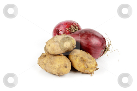 Red Onion and Potatoes stock photo, Two raw unpeeled red onions on a reflective white backgrounds by Keith Wilson