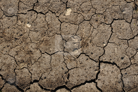 Cracked Mud or Dirt used as a Background stock photo, Brown Cracked Mud or Dirt used as a Background by Brandon Bourdages