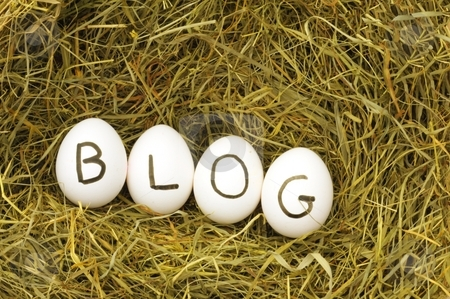 Blog stock photo, Blogg or rss concept with eggs on hey by Gunnar Pippel