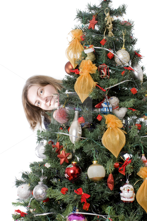 Girl hiding behind christmas tree stock photo, Happy girl hiding behind christmas tree, isolated by Nikola Spasenoski