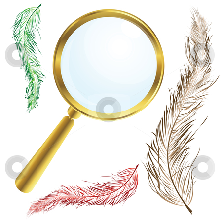 Magnifing glass stock vector clipart, Golden magnifing glass with vintage feathers by Richard Laschon