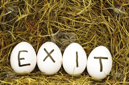 Exit stock photo, Exit concept with eggs on hey or straw by Gunnar Pippel