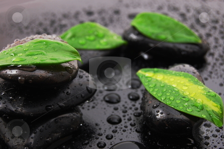 Wellness concept with zen stone stock photo, Wellness concept with zen stone and green leafs by Gunnar Pippel