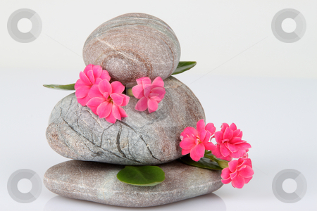 Stones stock photo, Balanced Stones and pink flowers on White. by Franz Schl?