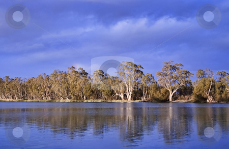 River murray south australia stock photo, Deep blue scenic of the river murray by Phil Morley