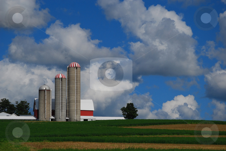 Farm on a hill with beautiful sky stock photo, A barn with three silos and a lone tree against a partly cloudy sky. by Christy Thompson