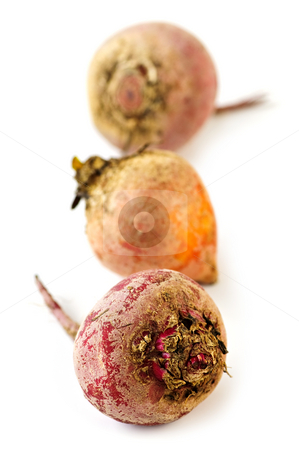 Red and golden beets stock photo, Close up of three whole red and golden beets isolated on white by Elena Elisseeva