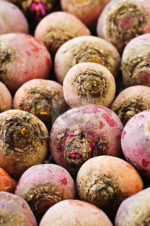 Red and golden beets stock photo, Close up of many whole red and golden beets by Elena Elisseeva
