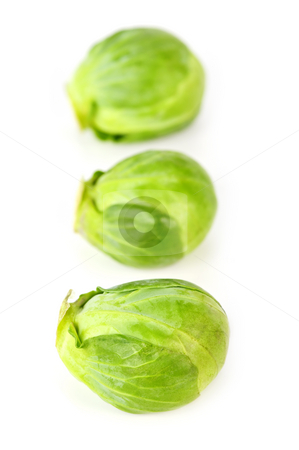 Isolated brussels sprouts stock photo, Three green brussels sprouts isolated on white background by Elena Elisseeva
