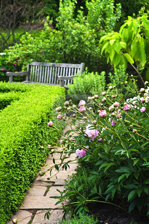 Lush green garden stock photo, Lush green garden with stone landscaping, flowers, hedge and bench by Elena Elisseeva