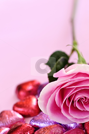 Valentine rose and candy stock photo, Pink rose with Valentine's chocolates wrapped in red and purple foil by Elena Elisseeva