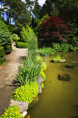 Landscaped garden path and pond stock photo, Landscaped garden path with plants and pond by Elena Elisseeva