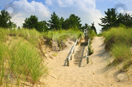 Wooden stairs over dunes at beach stock photo, Wooden stairs over dunes at beach. Pinery provincial park, Ontario Canada by Elena Elisseeva