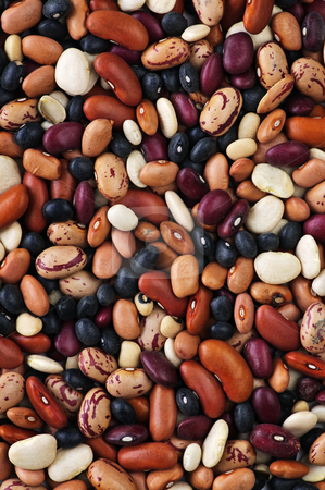 Dry beans stock photo, Assorted mix of various loose dry beans by Elena Elisseeva
