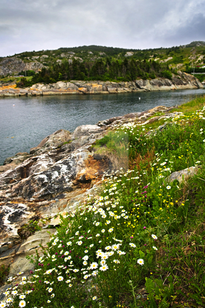 Atlantic coast in Newfoundland stock photo, Scenic coastal view of rocky Atlantic shore in Newfoundland, Canada by Elena Elisseeva
