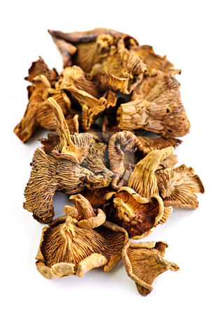 Dry chanterelle mushrooms stock photo, Dried chanterelle mushrooms isolated on white background by Elena Elisseeva