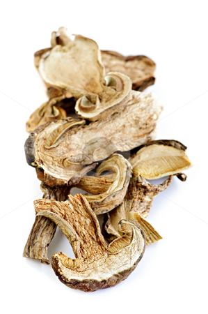 Dry porcini mushrooms stock photo, Dried sliced porcini mushrooms isolated on white background by Elena Elisseeva