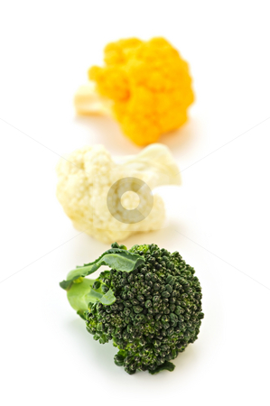 Broccoli and cauliflower stock photo, Broccoli and cauliflower isolated on white background by Elena Elisseeva
