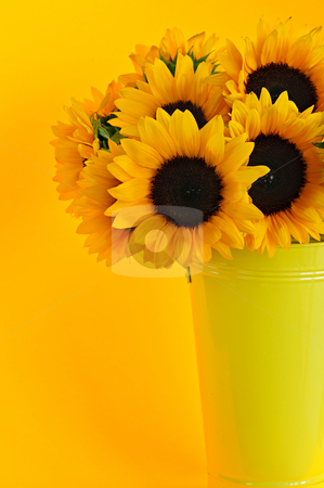 Sunflowers in vase stock photo, Bouquet of sunflowers in yellow metal vase by Elena Elisseeva