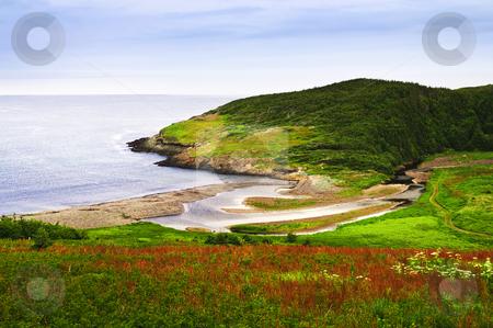 Atlantic coast in Newfoundland stock photo, Scenic coastal view of rocky Atlantic shore in Newfoundland, Canada by Elena Elisseeva