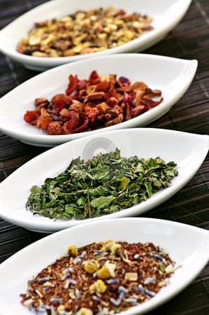 Assorted herbal wellness dry tea in bowls stock photo, Herbal wellness dried tea in four bowls by Elena Elisseeva