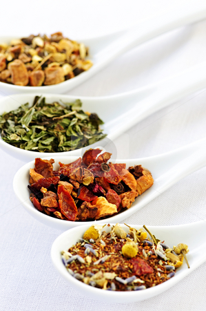 Assorted herbal wellness dry tea in spoons stock photo, Herbal wellness dried tea in four spoons by Elena Elisseeva