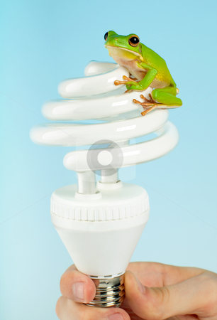 Frog on lamp stock photo, Ecological frog on energy saving light bulb by Anneke